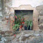 santu Lussurgiu case